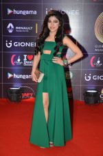 Tulsi Kumar at GIMA Awards 2016 on 6th April 2016 (159)_570643c00eb9c.JPG