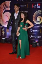 Tulsi Kumar at GIMA Awards 2016 on 6th April 2016 (161)_570643c433a9d.JPG