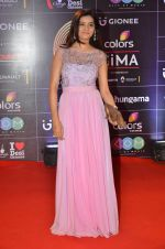 at GIMA Awards 2016 on 6th April 2016 (189)_5706414ee45f6.JPG