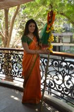Anjana Sukhani at Gudi Padwa photo shoot on 7th April 2016 (32)_5708e055a0bf1.JPG
