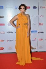 Dia Mirza at Femina Miss India red carpet on 9th April 2016