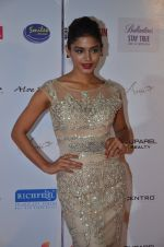 at Femina Miss India red carpet on 9th April 2016 (177)_570a4515ba35b.JPG