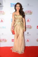 Rashmi Nigam at Hello Hall of Fame Awards 2016 on 11th April 2016 (143)_570cd8fcd7d11.JPG