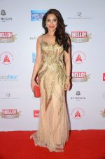Rashmi Nigam at Hello Hall of Fame Awards 2016 on 11th April 2016 (140)_570cd8fa5a31a.JPG