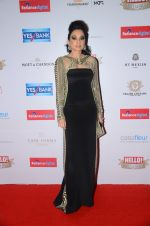 Sheetal Mafatlal at Hello Hall of Fame Awards 2016 on 11th April 2016 (156)_570cd9517d81e.JPG