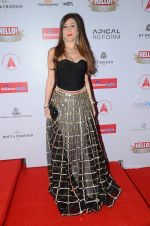 at Hello Hall of Fame Awards 2016 on 11th April 2016 (28)_570cd801df43e.JPG