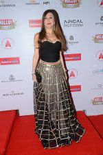 at Hello Hall of Fame Awards 2016 on 11th April 2016 (29)_570cd802d179a.JPG