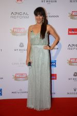 at Hello Hall of Fame Awards 2016 on 11th April 2016 (216)_570cd83f1f09f.JPG