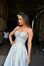 Malaika Arora Khan snapped in Mumbai on 15th April 2016 (3)_571210e5a409e.JPG