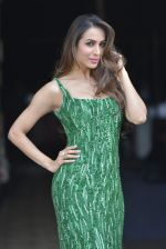 Malaika Arora Khan snapped on 16th April 2016 (22)_5713a7445fe1d.JPG