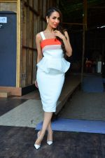 Malaika Arora Khan snapped in Mumbai on 17th April 2016 (10)_57147565407c6.JPG
