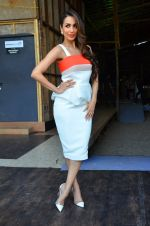 Malaika Arora Khan snapped in Mumbai on 17th April 2016 (3)_571474ba5e51a.JPG