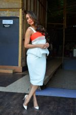 Malaika Arora Khan snapped in Mumbai on 17th April 2016 (7)_5714752181e19.JPG