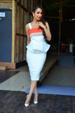 Malaika Arora Khan snapped in Mumbai on 17th April 2016 (9)_571475542139f.JPG