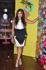 Nisha Jamwal at Maheka Mirpuri preview in Mumbai on 21st April 2016
