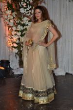 Aditi Gowitrikar at Bipasha Basu and Karan Singh Grover_s Wedding Reception on 30th April 2016 (229)_57282024331e8.JPG