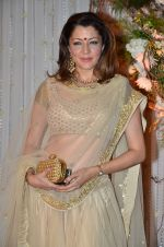 Aditi Gowitrikar at Bipasha Basu and Karan Singh Grover_s Wedding Reception on 30th April 2016 (230)_5728202fc100f.JPG