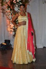 Candice Pinto at Bipasha Basu and Karan Singh Grover_s Wedding Reception on 30th April 2016 (6)_57282466cf8da.JPG