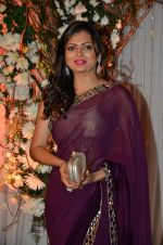 Drashti Dhami at Bipasha Basu and Karan Singh Grover_s Wedding Reception on 30th April 2016 (209)_5728252407fb3.JPG