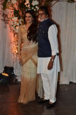 Tabu, Amitabh Bachchan at Bipasha Basu and Karan Singh Grover_s Wedding Reception on 30th April 2016 (289)_572820f001e7c.JPG