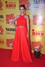 Evelyn Sharma at Tassel show on 8th May 2016