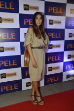 Monica Dogra at Pele screening in Mumbai on 9th May 2016 (30)_5732106fd13d6.JPG