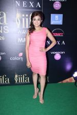 Monali Thakur at IIFA Press Conference in Taj Land_s End on 20th May 2016 (142)_574031a9dbf9f.JPG