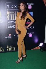 Shilpa Shetty at IIFA Press Conference in Taj Land_s End on 20th May 2016 (170)_5740327770d3d.JPG