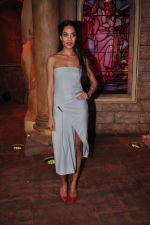 Lisa Haydon at Housefull 3 promotions on Comedy Nights Bachao on 23rd May 2016 (23)_5743fbeef2635.JPG