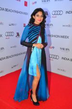 at India Beach Fashion Week in Goa on 23rd May 2016 (52)_5743fe6c5d549.JPG