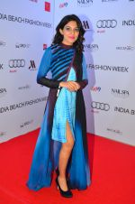at India Beach Fashion Week in Goa on 23rd May 2016 (53)_5743fe6deb14f.JPG