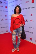 at India Beach Fashion Week in Goa on 23rd May 2016 (83)_5743fe9301b41.JPG
