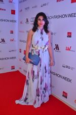 at India Beach Fashion Week in Goa on 23rd May 2016 (92)_5743fea40fe15.JPG