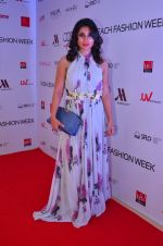 at India Beach Fashion Week in Goa on 23rd May 2016 (94)_5743fea8c3cd1.JPG