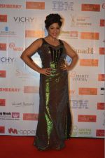 RJ Malishka at Kashish screening on 25th May 2016 (32)_57472a752bd53.JPG