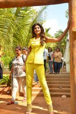 Shilpa Shetty at Promo Shoot of Sony TV_s India_s Super Dancer on 24th May 2016 (30)_574708034dc69.JPG
