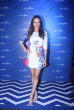 Evelyn Sharma at Asilo for Grey Goose Couture Cabanna on 28th May 2016