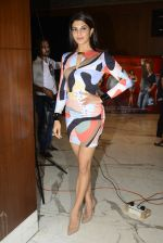 Jacqueline Fernandez snapped at Housefull 3 interview on 28th May 2016