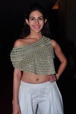 Amyra Dastur at siima awards press meet on 3rd June 2016 (29)_5752d247951cc.JPG