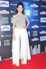 Amyra Dastur at siima awards press meet on 3rd June 2016 (36)_5752d2513a3e3.JPG