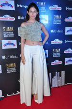 Amyra Dastur at siima awards press meet on 3rd June 2016 (38)_5752d25350af7.JPG