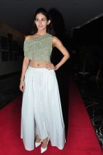 Amyra Dastur at siima awards press meet on 3rd June 2016 (4)_5752d22bc69f2.JPG