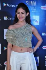 Amyra Dastur at siima awards press meet on 3rd June 2016 (45)_5752d25d09d4e.JPG