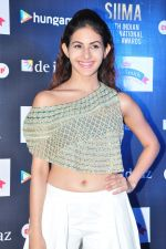 Amyra Dastur at siima awards press meet on 3rd June 2016 (46)_5752d25e50adb.JPG