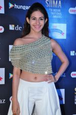 Amyra Dastur at siima awards press meet on 3rd June 2016 (48)_5752d262efb84.JPG