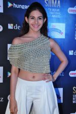 Amyra Dastur at siima awards press meet on 3rd June 2016 (50)_5752d2675cff8.JPG