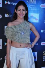 Amyra Dastur at siima awards press meet on 3rd June 2016 (52)_5752d26a6fc82.JPG
