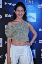 Amyra Dastur at siima awards press meet on 3rd June 2016 (53)_5752d26bac885.JPG