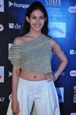 Amyra Dastur at siima awards press meet on 3rd June 2016 (54)_5752d26ddf57d.JPG