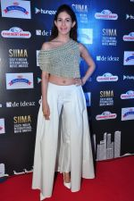 Amyra Dastur at siima awards press meet on 3rd June 2016 (56)_5752d2710e471.JPG
